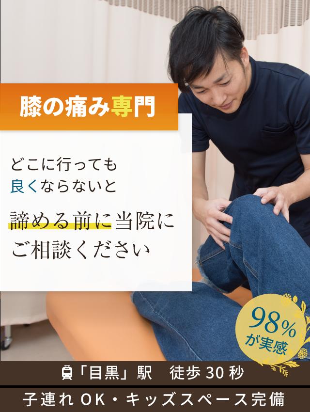 膝の痛み専門